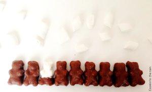 rangée d'oursons