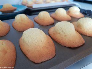 madeleines cuites et dorées