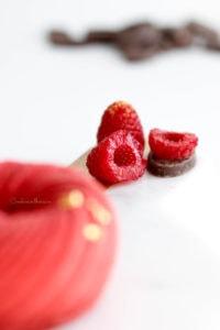 Entremet mousseux chocolat, tonka et framboise